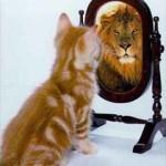 Как полюбить себя, или влияние самооценки на сферу отношений