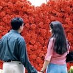 Варианты сценария Дня Святого Валентина